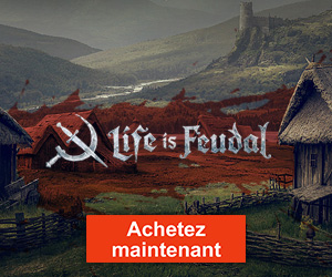 Fiche : Life is Feudal